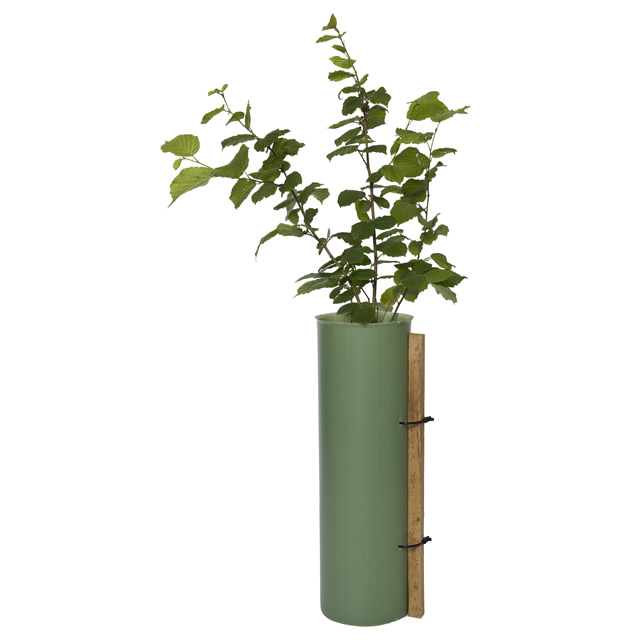 picture of Tubex Shrubshelter for Shrubs