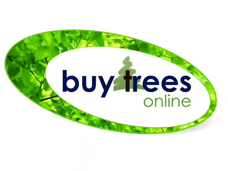 Buy Trees Online Retail Shop